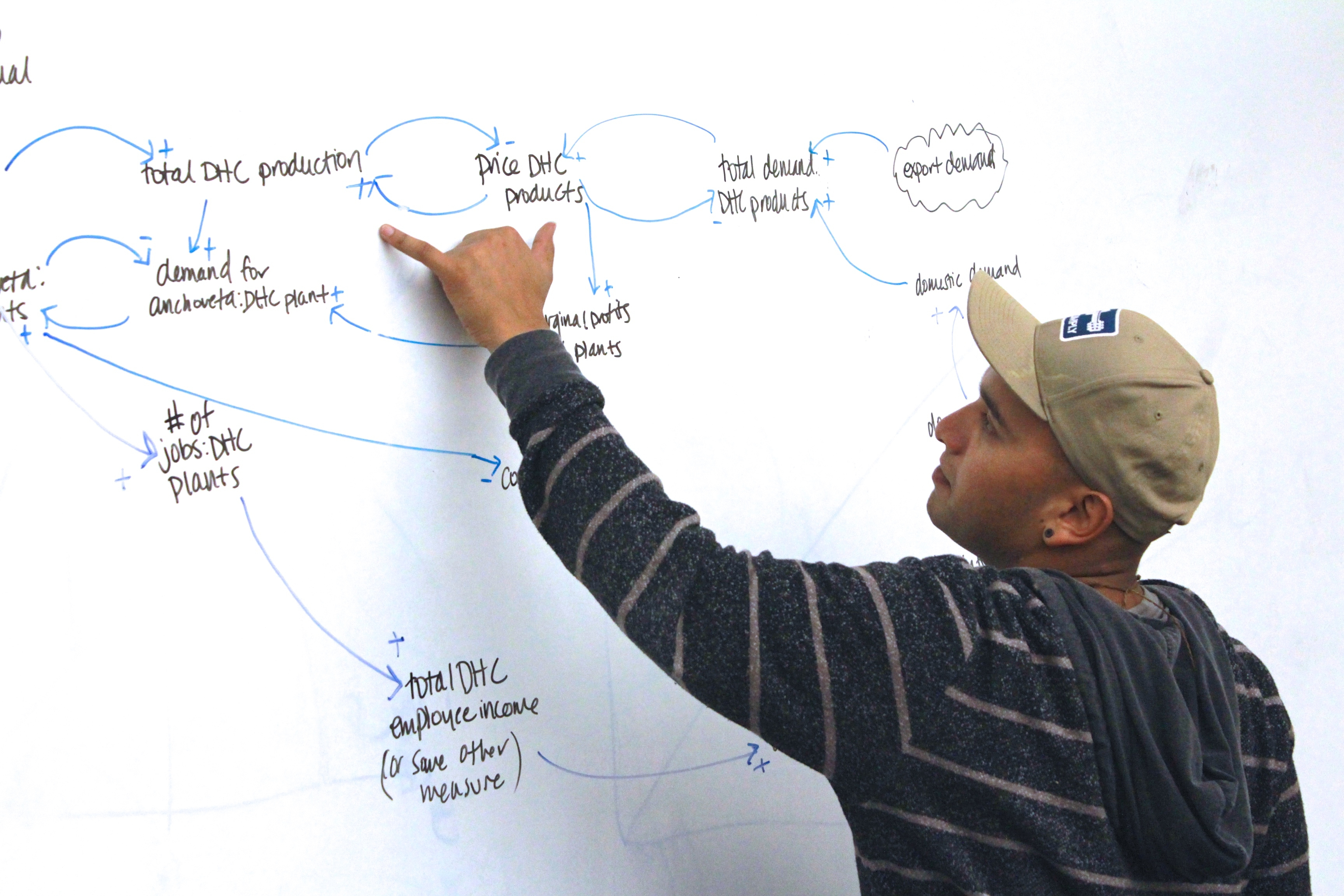 Renato working on systems thinking for Anchoveta project
