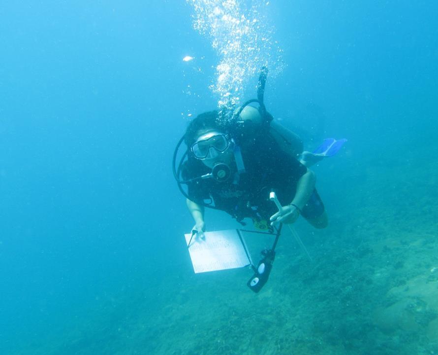Juliana conducting underwater survey